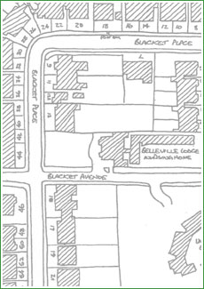 Blacket Area Plan